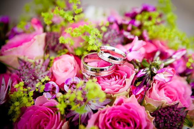 新潟県結婚・子育てポータルサイト「ハピニィ」