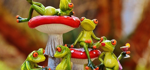 frogs-1176219_640